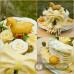 Sýrový dort jednopatrový s koníkem